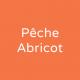 Granité Pêche Abricot 2L