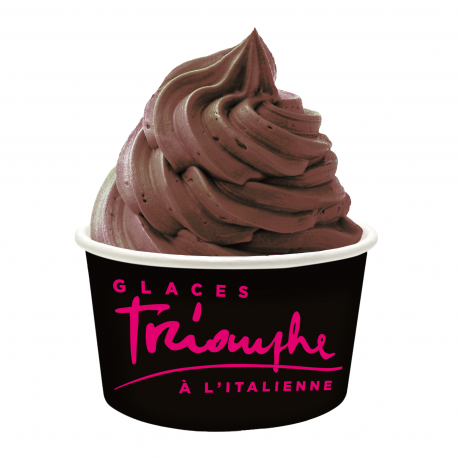 Large Ice Cream Cup Triomphe 230cc