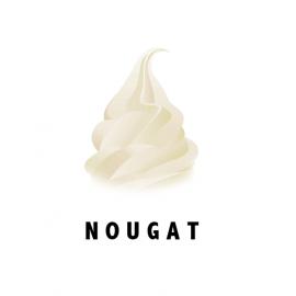 Mix Nougat (2 x 4.5 Kg)