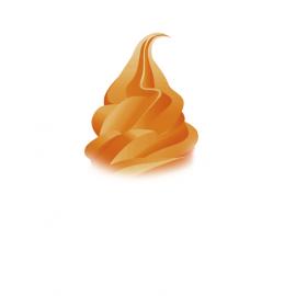Mix Caramel à la fleur de sel de Guérande (2 x 4.5 Kg)